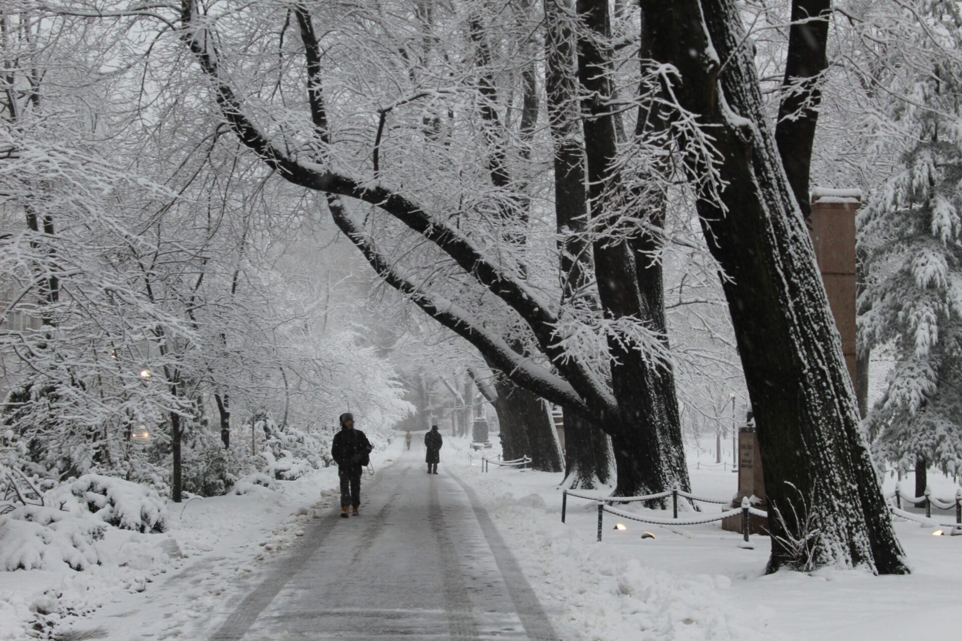 People walking along a path in the snow